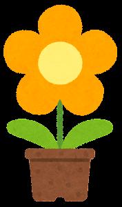 鉢植の花のイラスト(黄色)