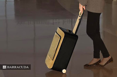 Barracuda foldable luggage
