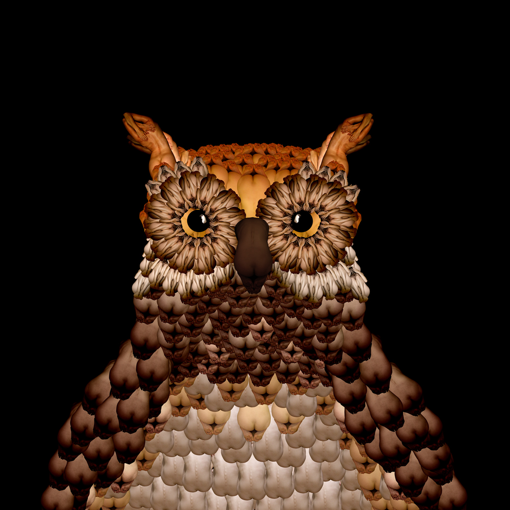 23-Owl-Cecelia-Webber-Nature-Replicated-with-Nude-Models-www-designstack-co