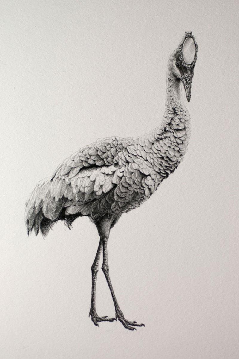 Mateo-Pizarro-04 Bestiary of Improbable Animals III: Drawings by Mateo Pizarro Design