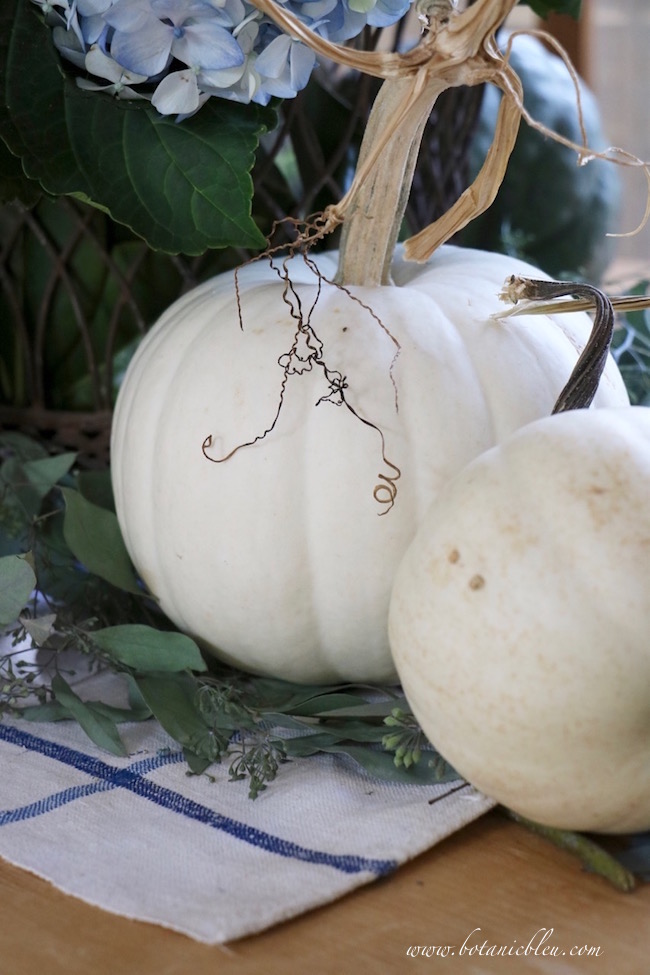 white-pumpkins-twisted-stem-table-display