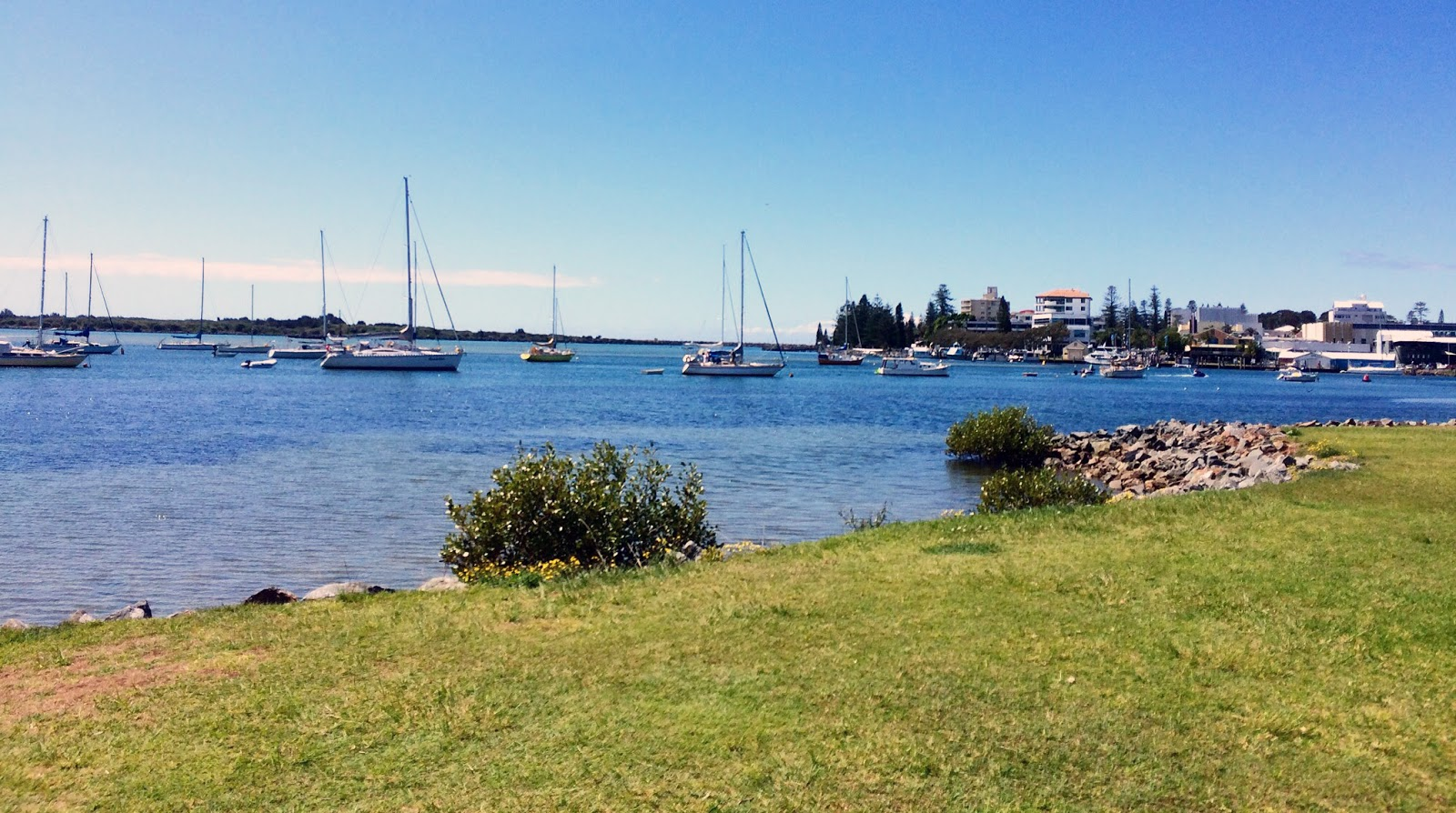 Port Macquarie Beer and Cider Festival Hastings River backdrop