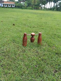 Woodball (bola kayu) Permainan Olahraga Oleh : D. Soetrisno