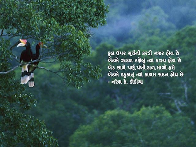 फूल उपर सूर्यनी करडी नजर होय छे Gujarati Muktak By Naresh K. Dodia