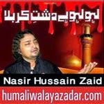 http://www.humaliwalayazadar.com/2014/10/nasir-zaidi-nohay-2015.html