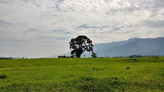 Casas en San José Pinula