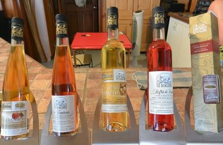 Quebec, ice wine, Canadá, vino de hielo, vino de hielo