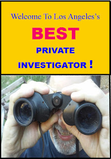 BUREAU OF SECURITY AND INVESTIGATIVE SERVICES LICENSED PRIVATE DETECTIVE