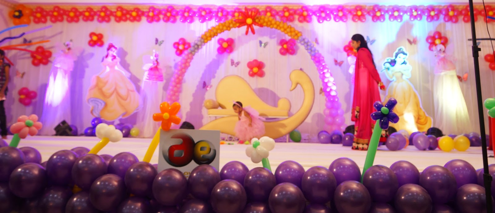 Aicaevents India Princess Theme Birthday Decorations
