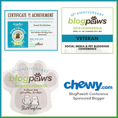 Recognitions at BlogPaws