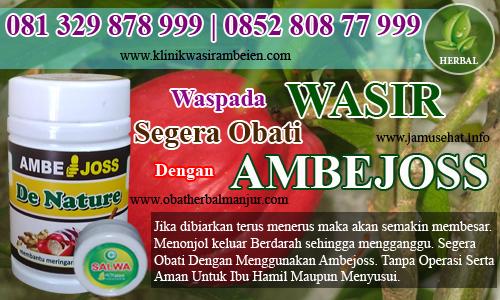 obat wasir tradisional mujarab