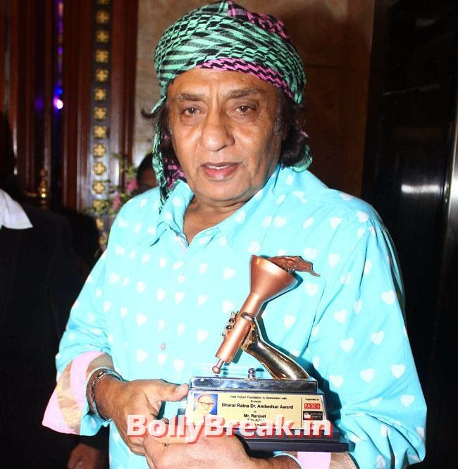 Ranjeet, Rashmi Desai, Tanisha, Rituparna, Salma, Divya at Bharat Ratna Dr Ambedkar Awards 2014