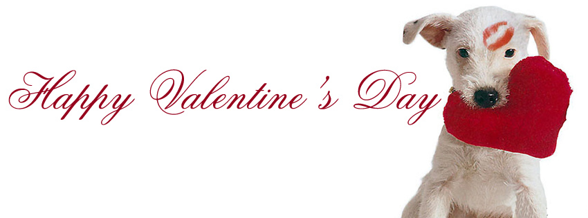 Hd wallpapers fine happy valentine 39 s day facebook covers - Valentines day pictures with puppies ...
