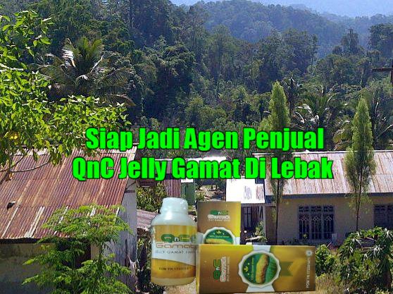 Penjual QnC Jelly Gamat Di Lebak