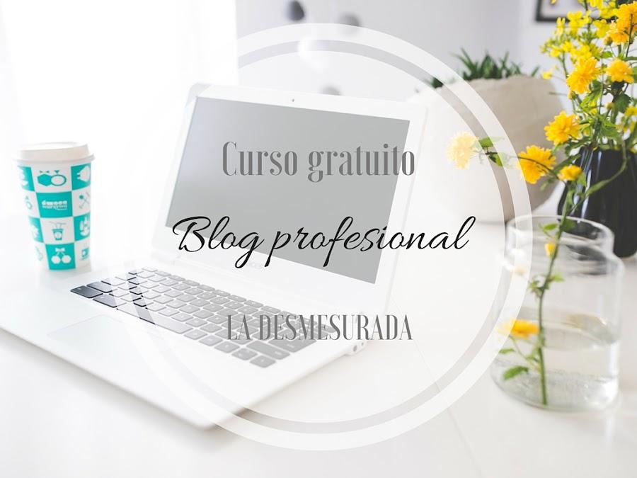 Curso bloguera profesional