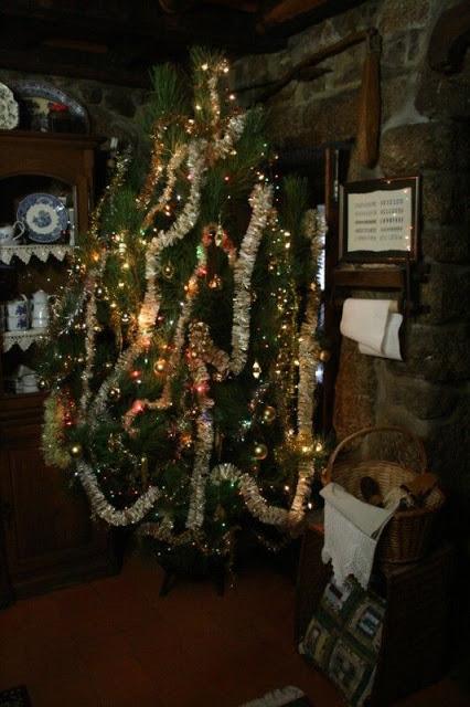... dos Pinheiros de Natal enfeitados com bolas de vidro