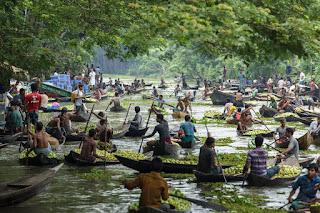 marché de goyave au Bangladesh