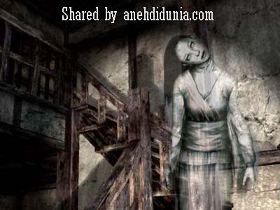 www.anehdidunia.com