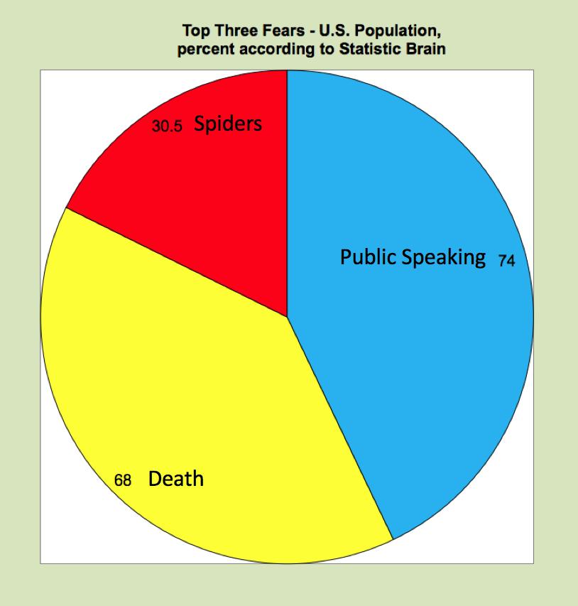Joyful Public Speaking From Fear To Joy An Ineffective Pie Chart
