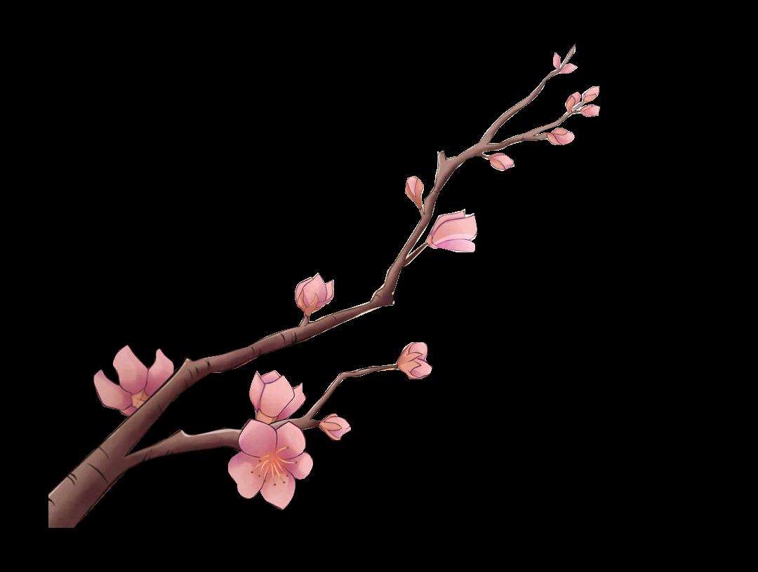 render rama flores de cerezo