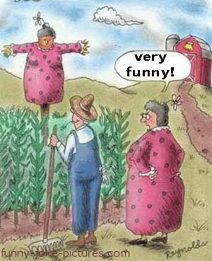 Hilarious Wife Farm Scarecrow Cartoon Picture