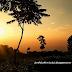 Kebun Teh Wonosari, Wisata Alam Yang Indah Dan Alternatif Mengisi Masa Liburan Kamu