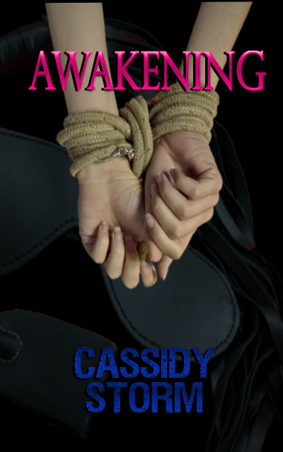 Cover Reveal + Excerpt: Awakening by Cassidy Storm