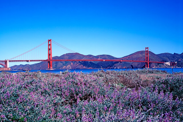 Primavera em San Francisco