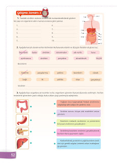 6. Sınıf Fen Bilimleri Ders Kitabı Cevapları Sevgi Yayınları Sayfa 52