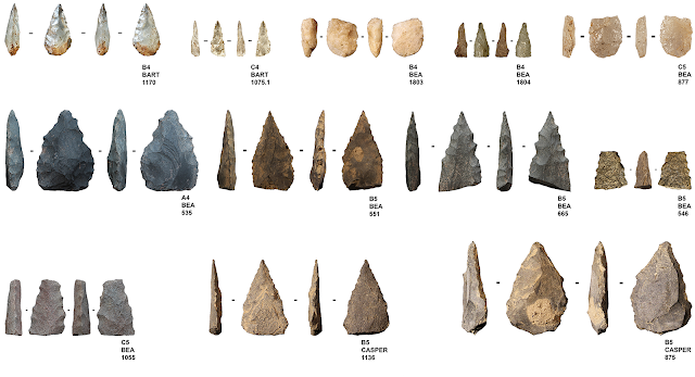 Early evidence of Middle Stone Age projectiles found in South Africa's Sibudu Cave