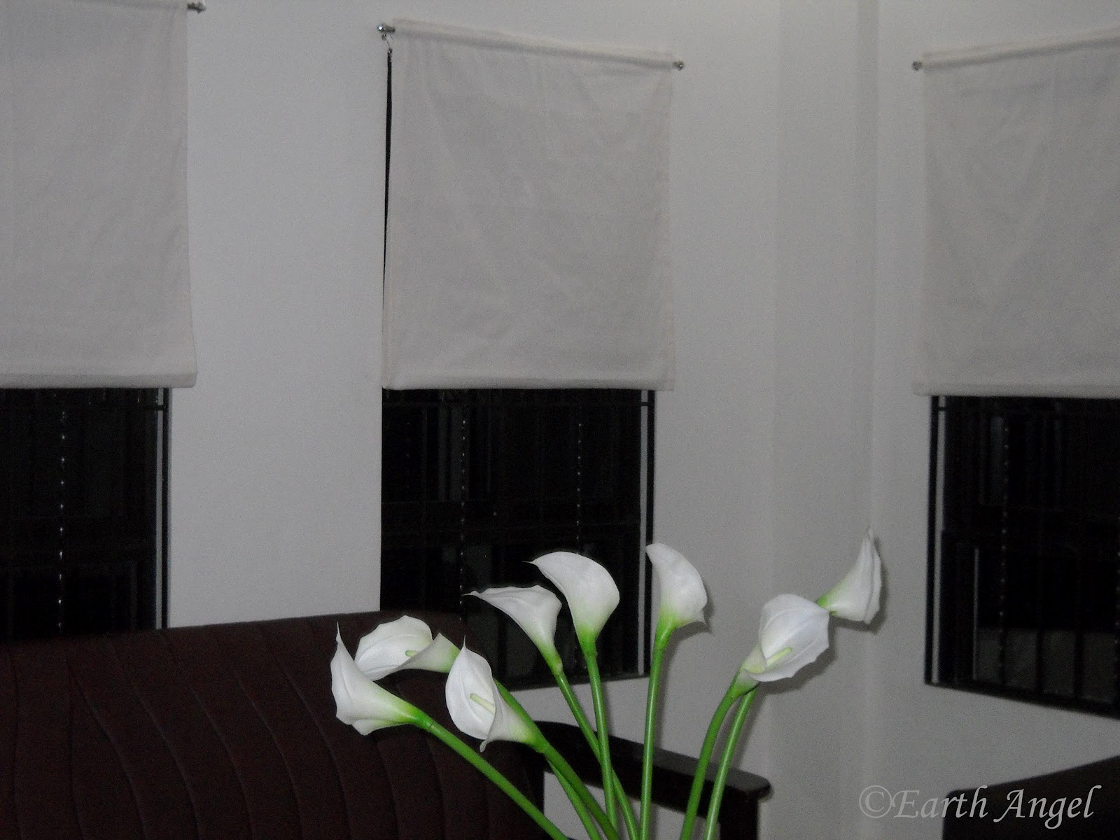 Earth Angel Diy Minimalist Window Treatment