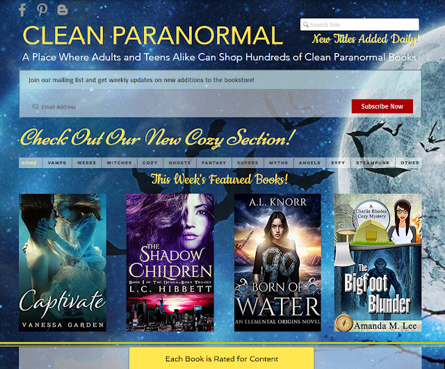 http://cleanparanormal.com