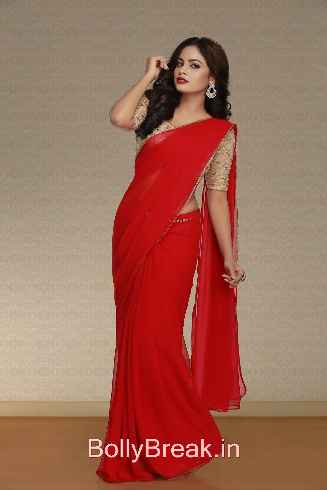 High Quality Nandita Pics, Actress Nandita Swetha in Saree - Hot HD 2015 Pics