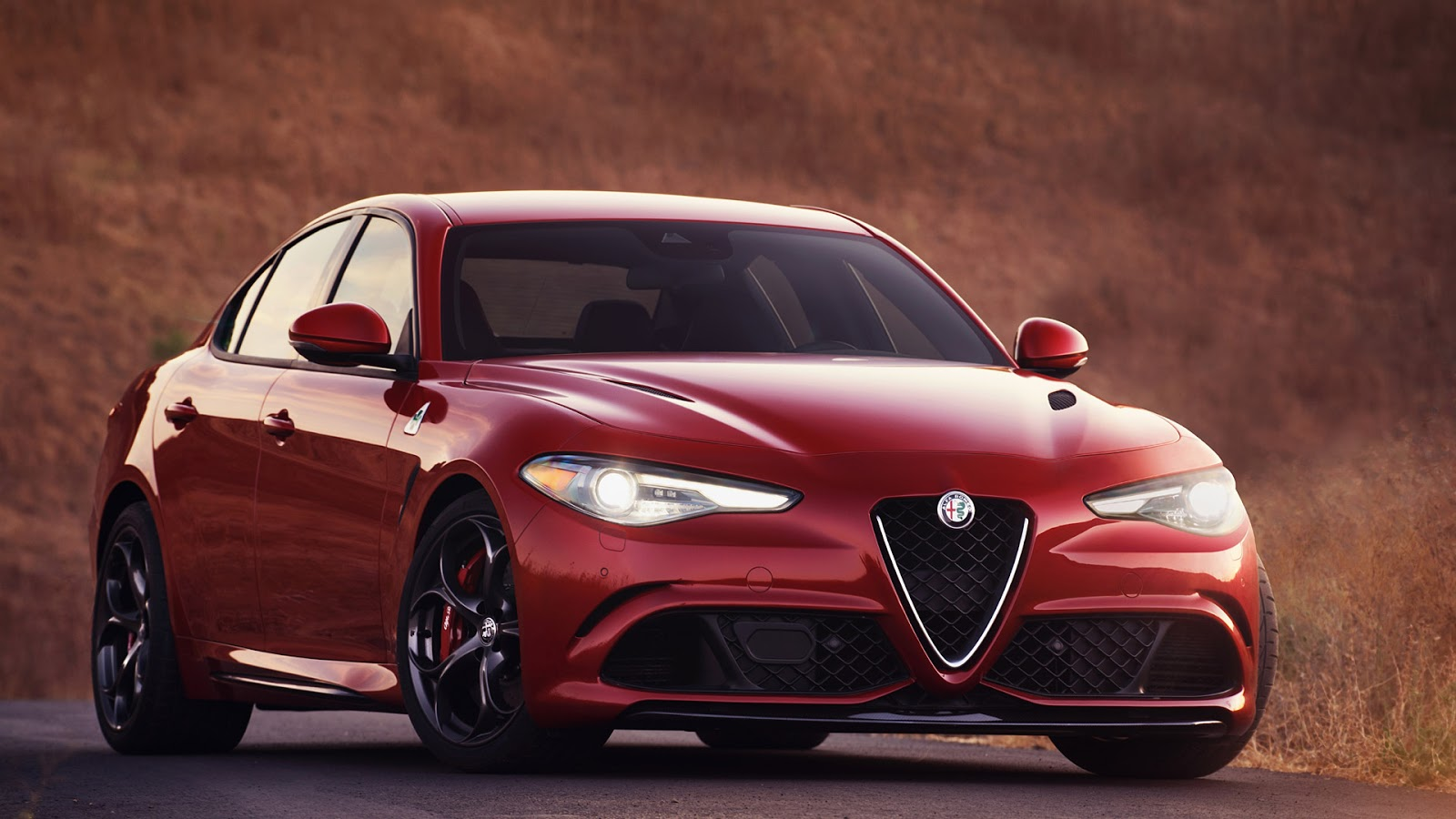 31 Alfa Romeo Giulia Quadrifoglio Wallpapers Wallpapercarax
