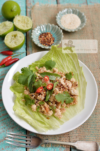 Thai chicken salad larb gai