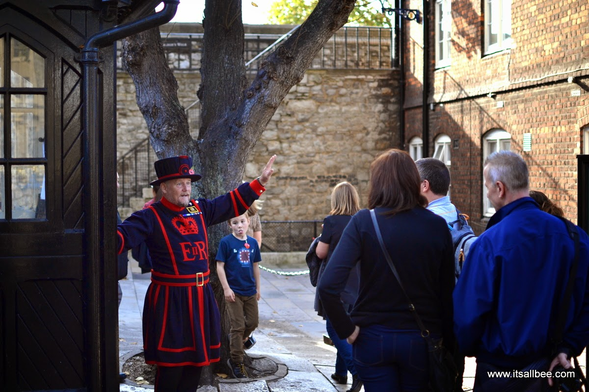 tower of london poppies | tower of london beefeater
