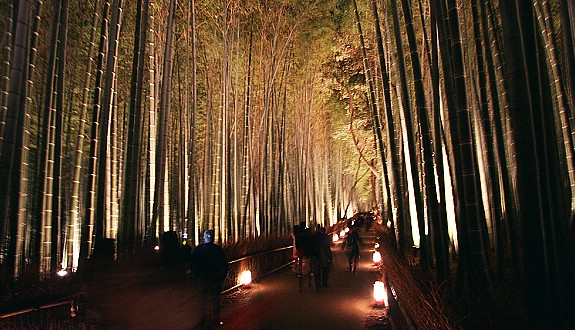 Arashiyama Hanatōro (flower and light road), Kyoto