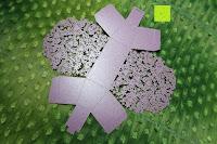 oben: 50pcs Wedding Candy Boxes Butterfly Laser Cut Kartonage Schachtel Bonboniere Geschenkbox Hochzeit (Purple)