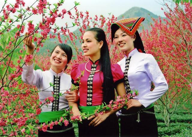 Vietnamese Ethnic Traditional Female Costumes 2