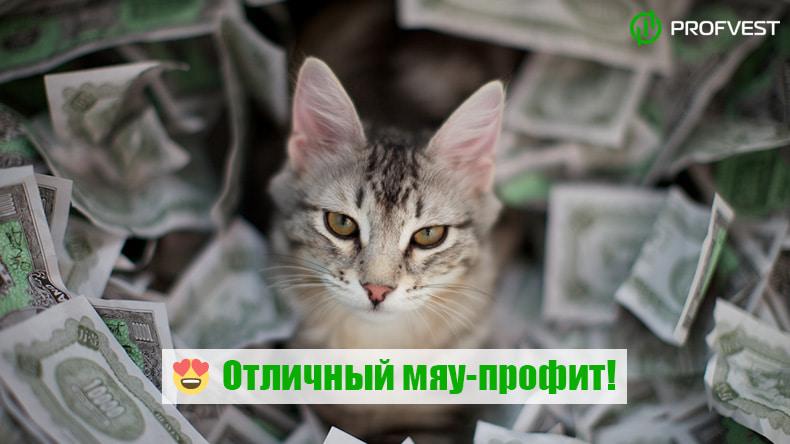 Повышение Рестарт Kitty-Boom.com