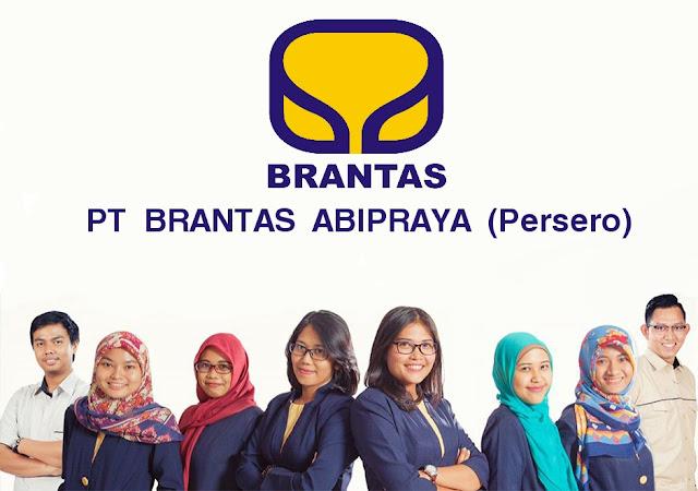 Hasil gambar untuk PT Brantas Abipraya (Persero)