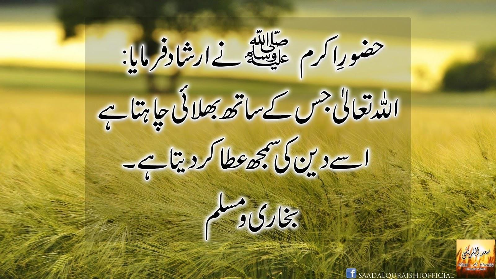 Milawat in urdu essay
