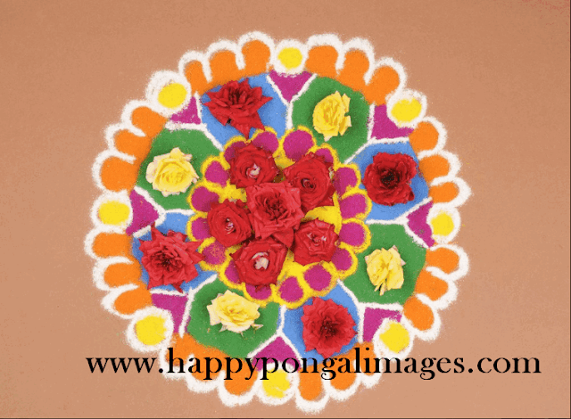Sankranthi Muggulu Images
