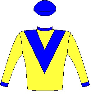 Al Sahem - Jockey Silks - Yellow, royal blue chevron, collar, cuffs and cap - Horse Racing - Durban July