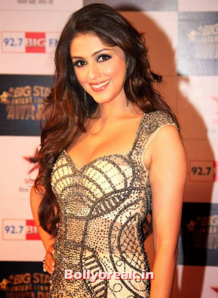 Aarti Chhabria, Tv babes Sizzle on Big Star Entertainment Awards 2013 Red Carpet