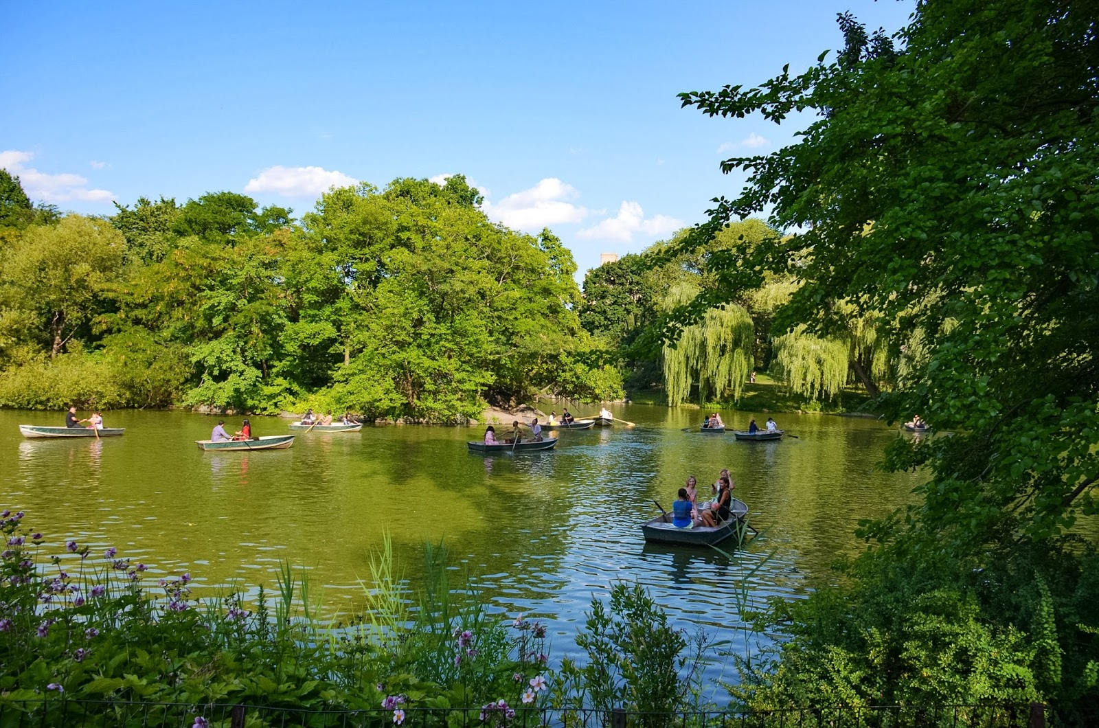 row boats in central park
