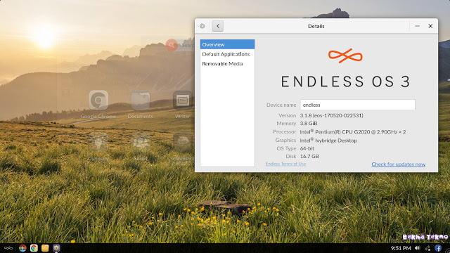 Instal OS Endless 20