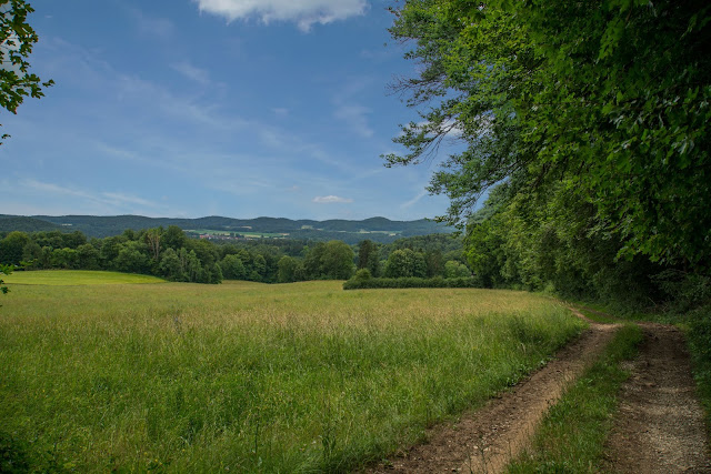 Erzweg Etappe 5 Etzelwang – Lichtenegg  Wandern Amberg-Sulzbacherland 05