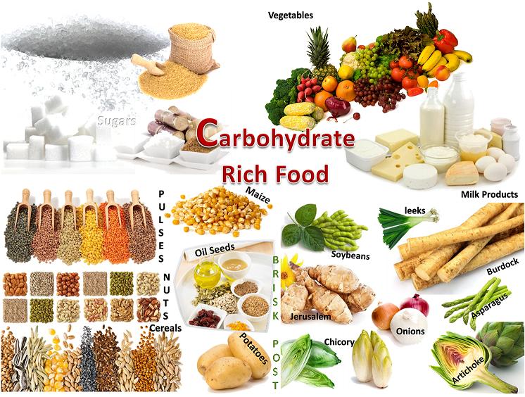 Makalah Karbohidrat Makalah Point