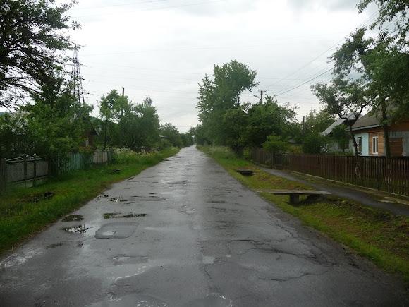 Пациків. Вулиця Шевченка